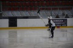 hokej004