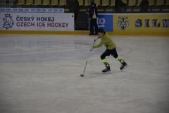 hokej007