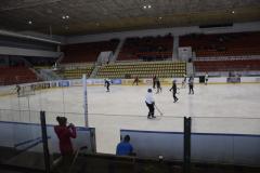 hokej008