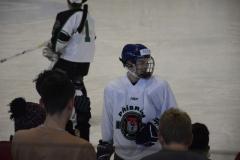 hokej009