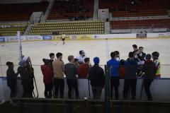 hokej010