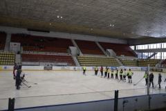 hokej012