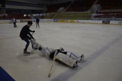 hokej015