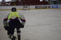 hokej018