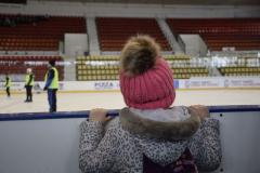 hokej022