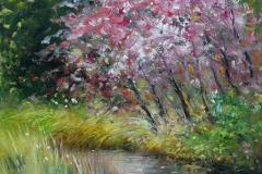 jaro-u-potoka